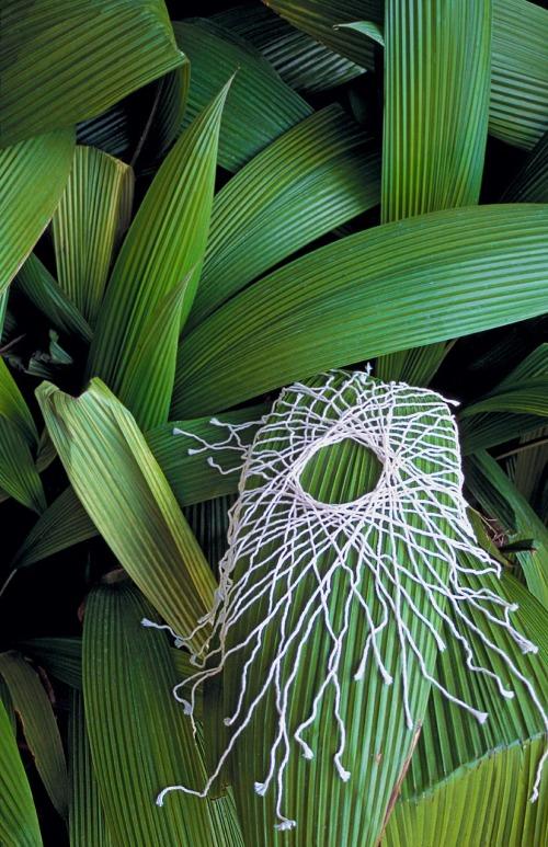 String Circle On Leaves ©2000 Gloria Lamson